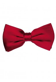 Bow Tie Silk Dark Red Ruby LORENZO CANA
